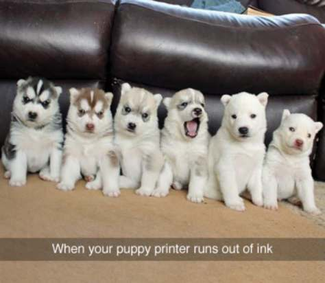 printer_runs_out_of_ink