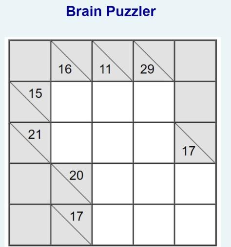 Brain Puzzler Nov